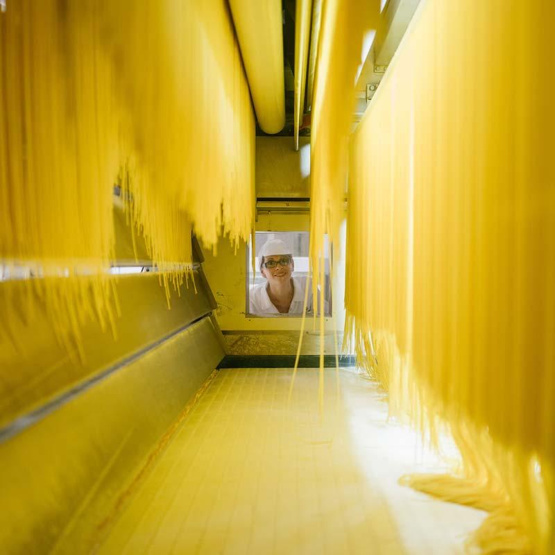 Filiera della pasta - filiera alimentare e produttiva della pasta